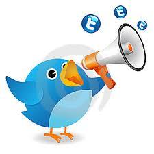 Audiencia Twitter
