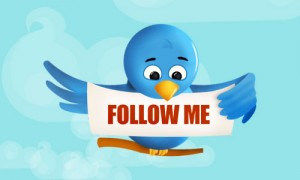 Seguidores Twitter