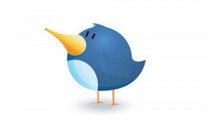 Twiter Community Manager